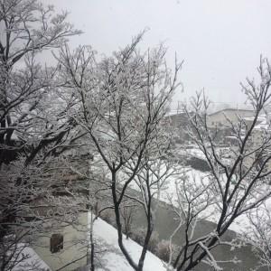 写真 2017-01-11 15 23 09 (1)